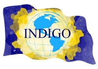 INDIGO Brilliant