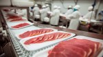 Пищевая биотехнология